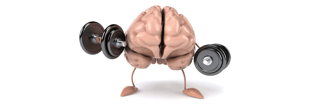 Brain with dumbell