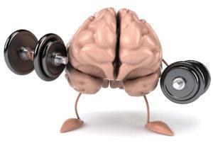 high performance brain
